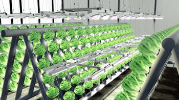 photonica_vertical_farming.png